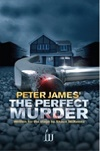 + The Perfect Murder